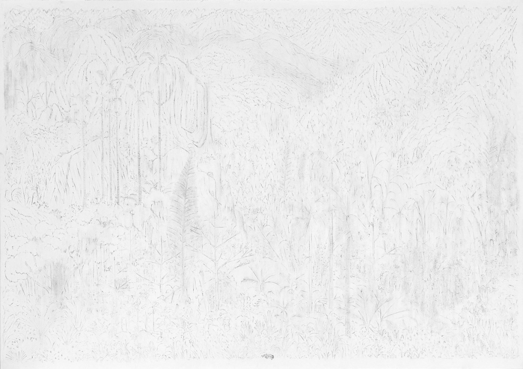 fall, pencil on paper, 42cm x 59.4cm, 2010. private collection.