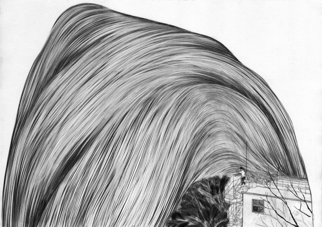 landscape 2, pencil on paper, 42cm x 59.4cm, 2010. private collection.